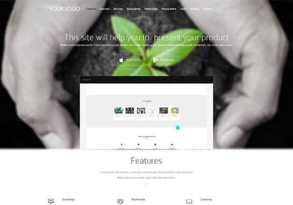 WordPress theme - business landing page